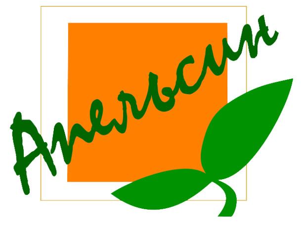 Квадратный апельсин: эмблема, логотип